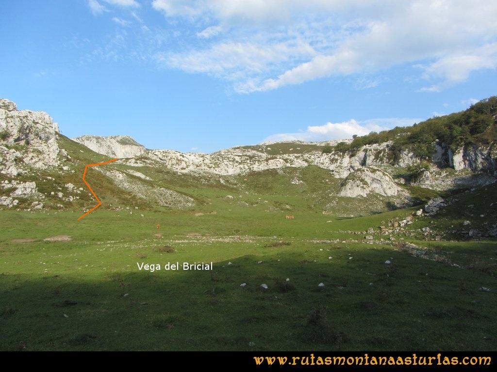 Ruta Ercina, Verdilluenga, Punta Gregoriana, Cabrones: Vega del Bricial