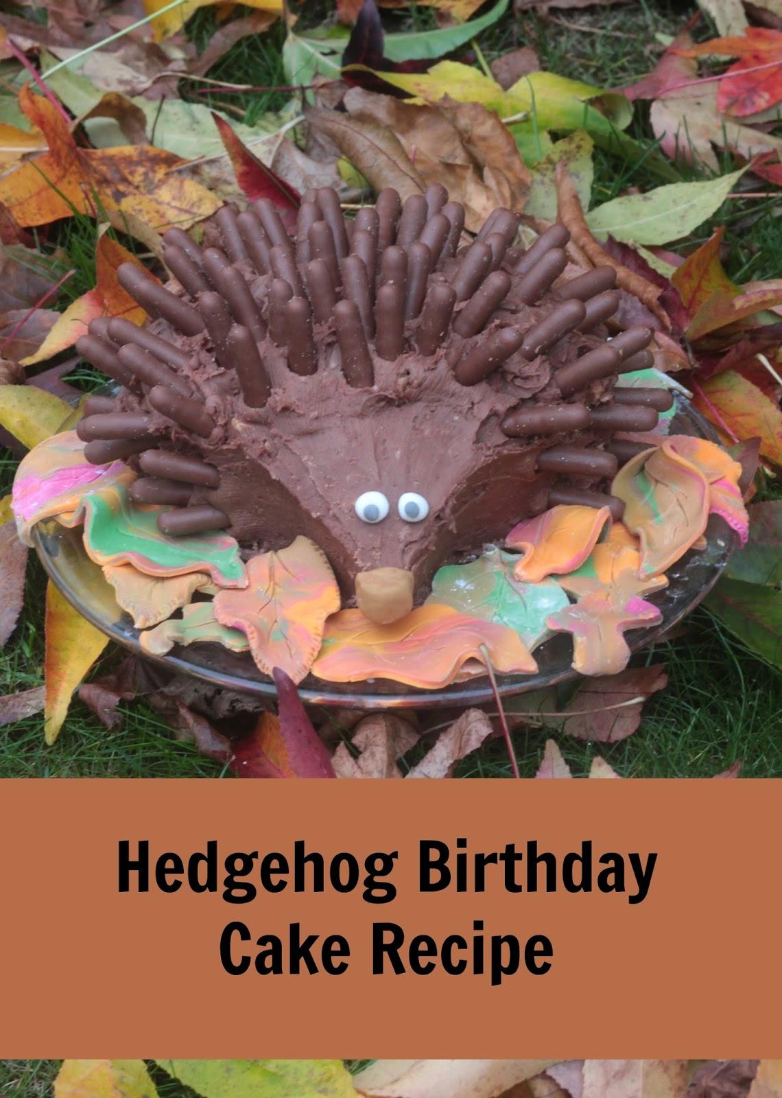 Hedgehog Birthday Cake Tesco