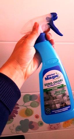 cattivo odore bagno