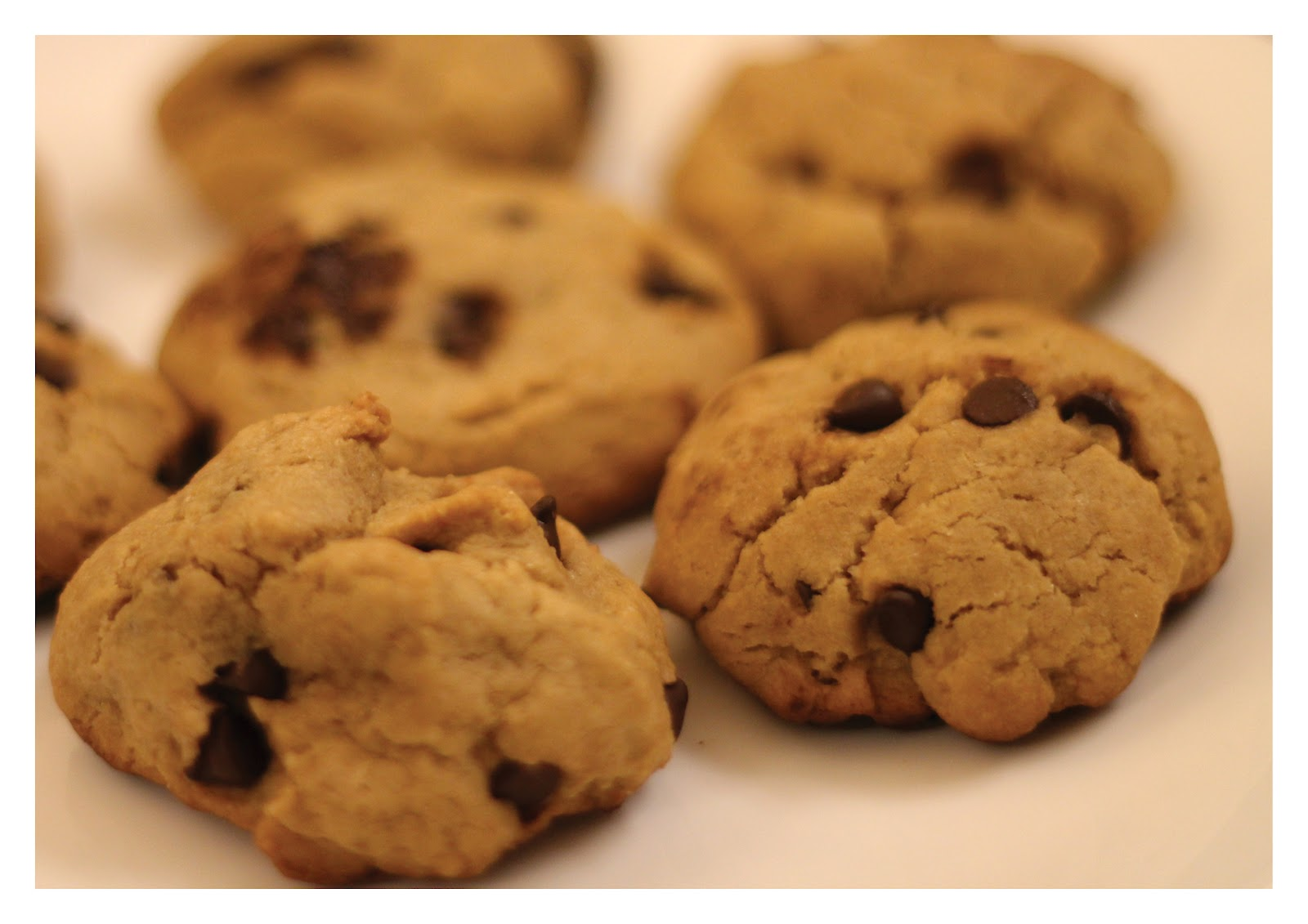 Chocolate Chip Cookies No Baking Soda No Brown Sugar