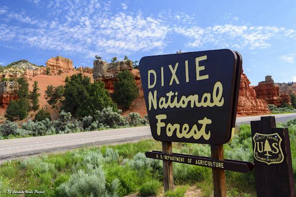 Dixie National Forest - Utah, por El Guisante Verde Project