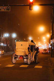 white carriage on road 2496604
