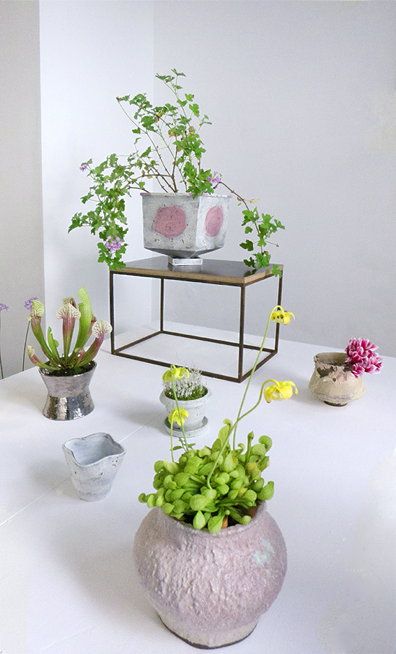 http://www.bromptondesigndistrict.com/event/pot-plant