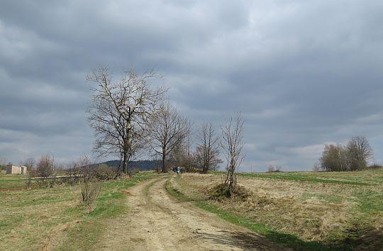 Droga na Przełęcz nad Wąwozem.