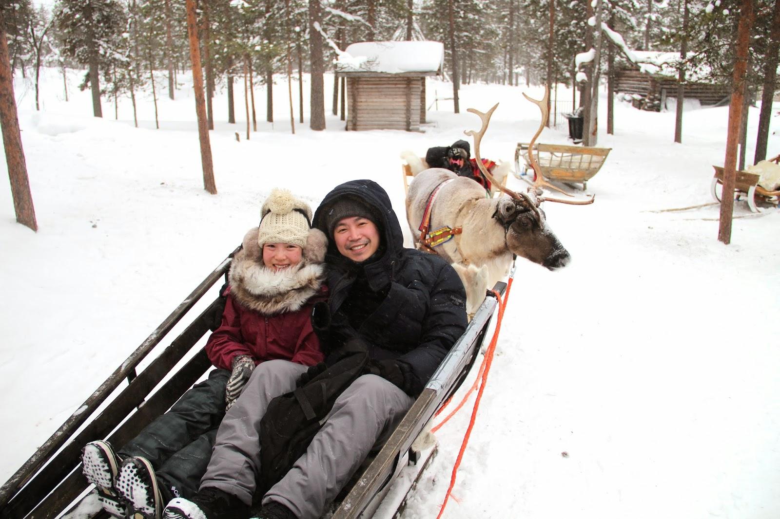 Reindeer Sled Finland