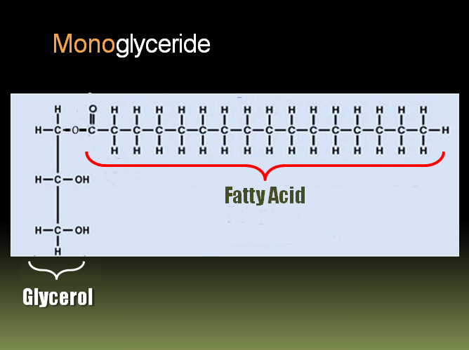 Fatty Acid That Is Liquid At Room Temperature