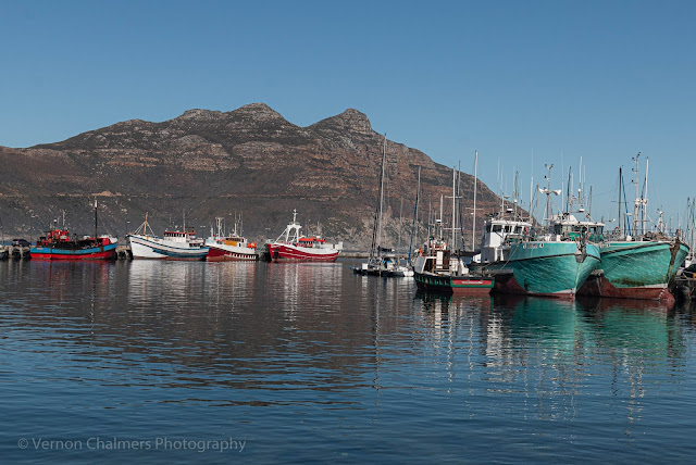 Colourful Fishing Boats Moored in the Hout Bay Harbour Cape Town