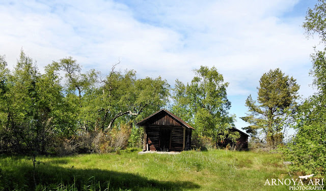 Pyhäjoki municipality, Lohikari
