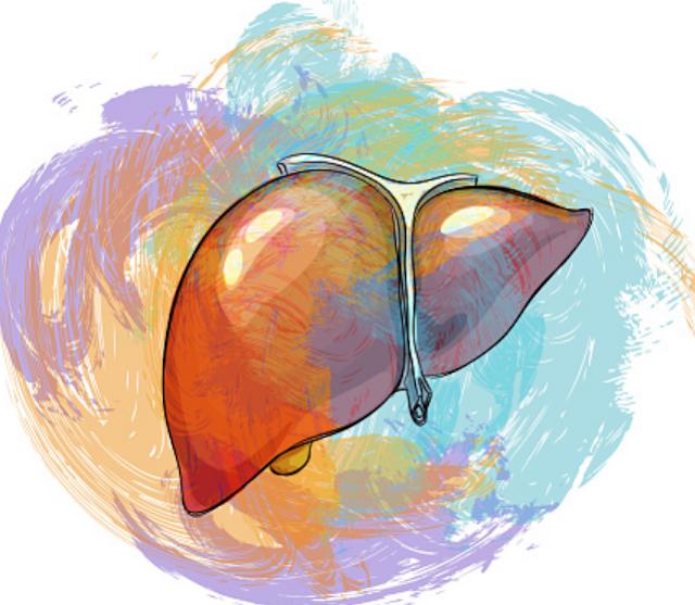 Penyakit Hepatomegali : Pengertian, Penyebab, Gejala, dan Pencegahan Pengertian Hepatomegali Hepatomegali adalah penyakit yang diakibatkan oleh terjadinya pembesaran ukuran organ hati yang melebihi ukuran normalnya. Kondisi ini dapat dipicu oleh penyakit di hati ataupun di luar hati. Hepatomegali harus segera ditangani agar tidak menimbulkan kerusakan fungsi hati yang dapat berdampak kepada peran organ tubuh lainnya, seperti proses pembersihan darah dari zat kimia berbahaya.  Penyebab Hepatomegali Di antara penyebab-penyebab hepatomegali, kasus paling umum yang menjadi pemicu hepatomegali adalah berbagai penyakit dan kondisi berikut : Kanker yang berasal dari hati itu sendiri Metastasis, kanker hati yang berasal dari kanker di organ-organ lain Penyakit hati alkoholik atau alcoholic liver disease akibat konsumsi minuman beralkohol berlebihan dapat menyebabkan terjadinya penumpukan lemak pada hati. Penyakit yang termasuk dalam penyakit hati alkoholik antara lain hepatitis alkohol, penyakit perlemakan hati alkoholik, dan sirosis. Penyakit perlemahan hati nonalkoholik atau Non-alcoholic fatty liver disease adalah gangguan pada proses metabolisme akibat pola hidup tertentu. Hepatitis A, B, C, D, atau E. Beberapa kondisi penyakit lain dapat menjadi penyebab hepatomegali, seperti infeksi bakteri dan parasit, berbagai kelainan pada jantung, berbagai kanker, dan kelainan genetik. Kelainan genetik dapat menyebabkan terjadinya penumpukan lemak, protein, atau zat lain pada organ hati yang bisa berujung kepada terjadinya pembesaran ukuran hati. Kelainan genetik tersebut antara lain penyakit penimbunan glikogen, penyakit wilson, dan hemokromatosis.  Sebagian jenis kanker, seperti kanker darah, limfoma, dan multiple myeloma juga dapat menjadi pemicu hepatomegali. Berbagai kelainan jantung juga termasuk faktor risiko hepatomegali, antara lain gagal jantung kongestif dan stenonsis pada katup jantung. Pada pasien bayi baru lahir dan anak-anak, hepatomegali juga dapat disebabkan oleh 