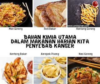 Bahan Kimia Utama Dalam Makanan Harian Kita Penyebab Kanser
