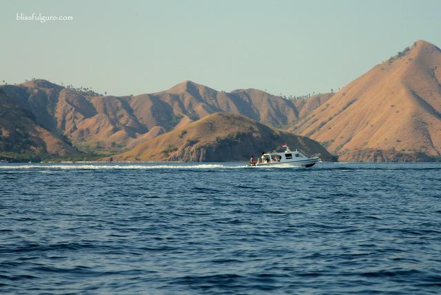 Komodo National Park Indonesia Speedboat