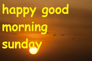 happy good morning sunday