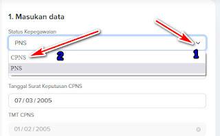 cara mengerjakan dan mengisi riwayat CPNS PNS di MYSAPK BKN.