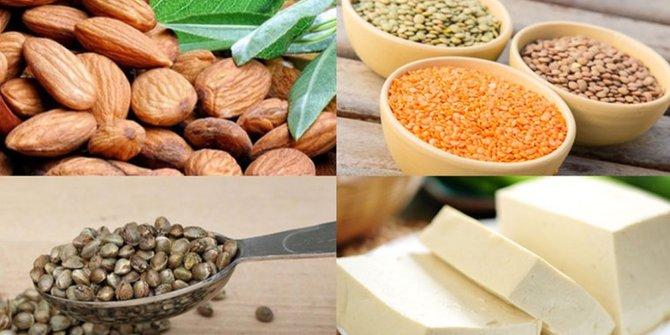13 Makanan Yang Mengandung Protein Nabati Paling Tinggi