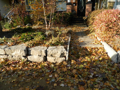 Greektown on the Danforth Fall Front Garden Cleanup before by Paul Jung Gardening Services