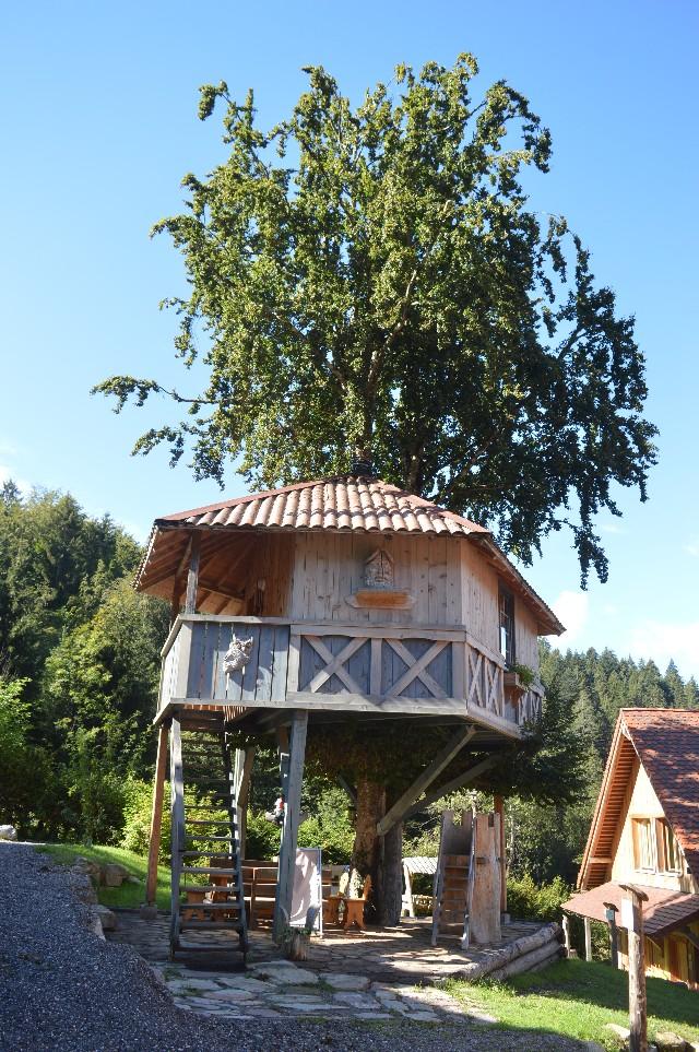 casa sull'albero dolomiti village