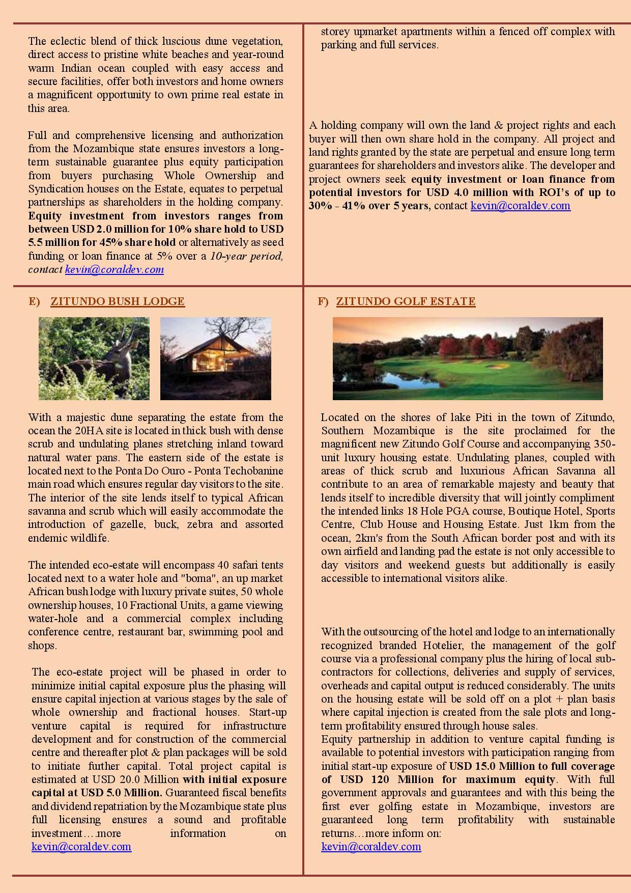 Investment Newsletter 2021