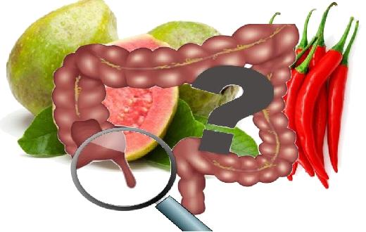 Penyebab usus buntu apakah akibat dari makan jambu biji dan cabai.