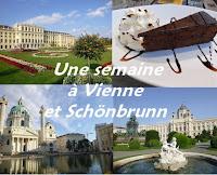 City-trip Vienne Voyage Autriche schonbrun sissi visite voir monument itineraire weekend