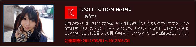 Djexi-24l TOKYO COLLECTION No.040 Natsu 04070