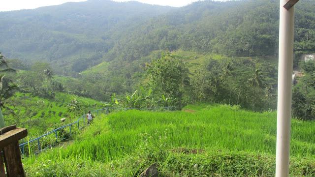 Pemandangan di Curug Nangga