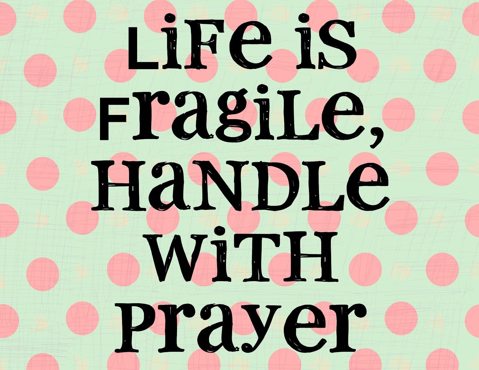 BUG A BOO CORNER: Life Is Fragile :