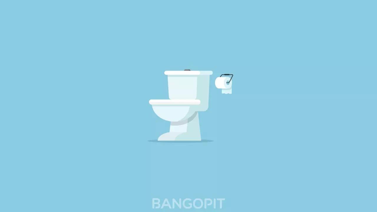 4 Tips Penting dalam Membeli Toilet agar Tidak Salah Pilih