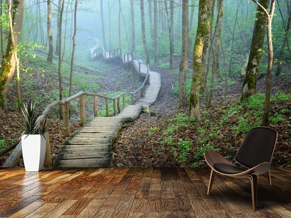 Skog Tapet Fototapet Skog Trädstammar Natur Tapet