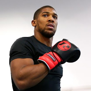 Video : Anthony Joshua Arrives Nigeria