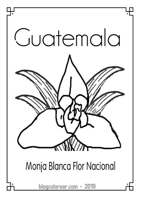 Monja Blanca Colorear