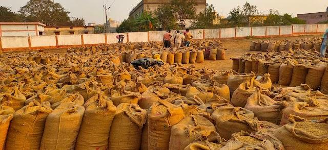 एफसीआई में चावल जमा नहीं होने और बारदानें की कमी के कारण धान खरीदी में संकट की स्थिति