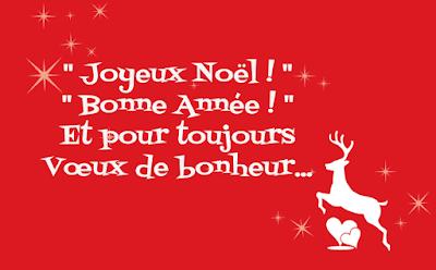 Vœux de Joyeux Noël et Bonne Année !