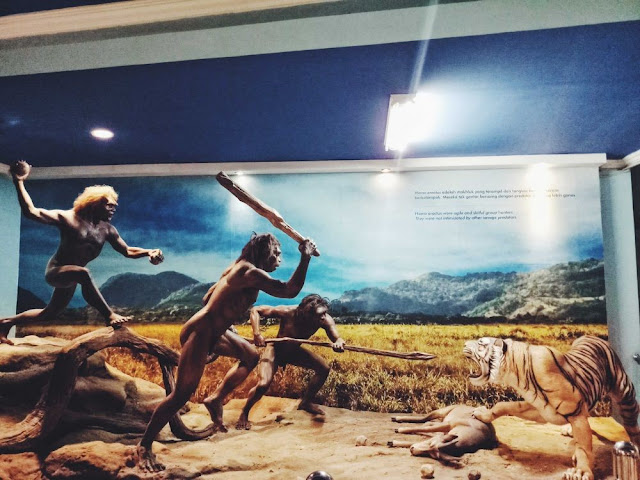 museum prasejarah sangiran