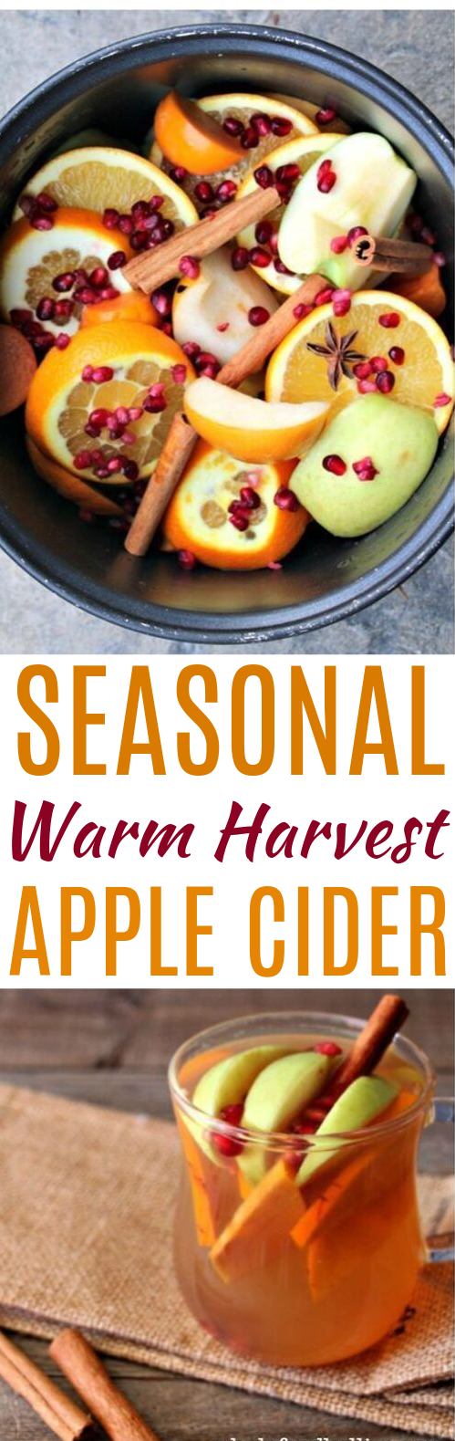 Homemade Fall Harvest Hot Crockpot Apple Cider #drinks #applecider