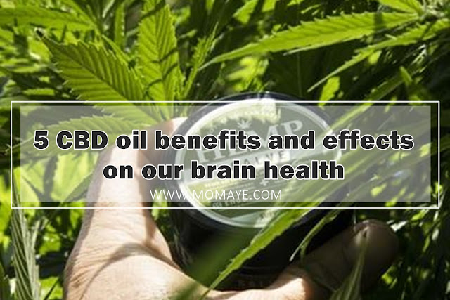 CBD, CBD Oil, health, brain health