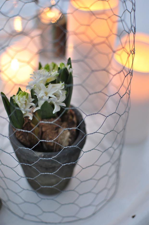 hannashantverk.blogspot.se uterum vår hyacint vårlök