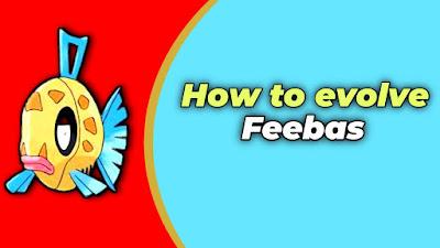 How to evolve feebas