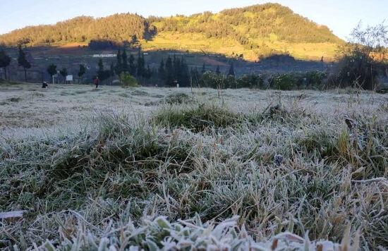 Cuaca Dingin, Bediding, BMKG, Pemalang, Moga, Pemalang Selatan, Gunung Slamet