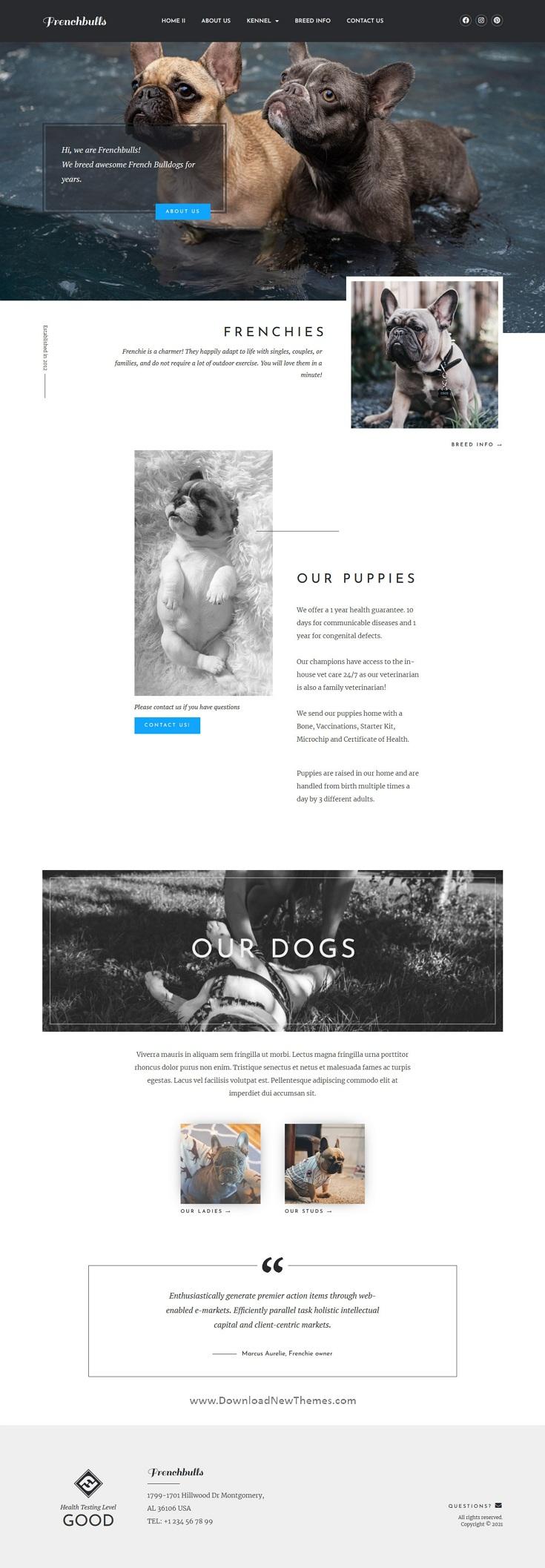 Dog Breeder Elementor Template Kit