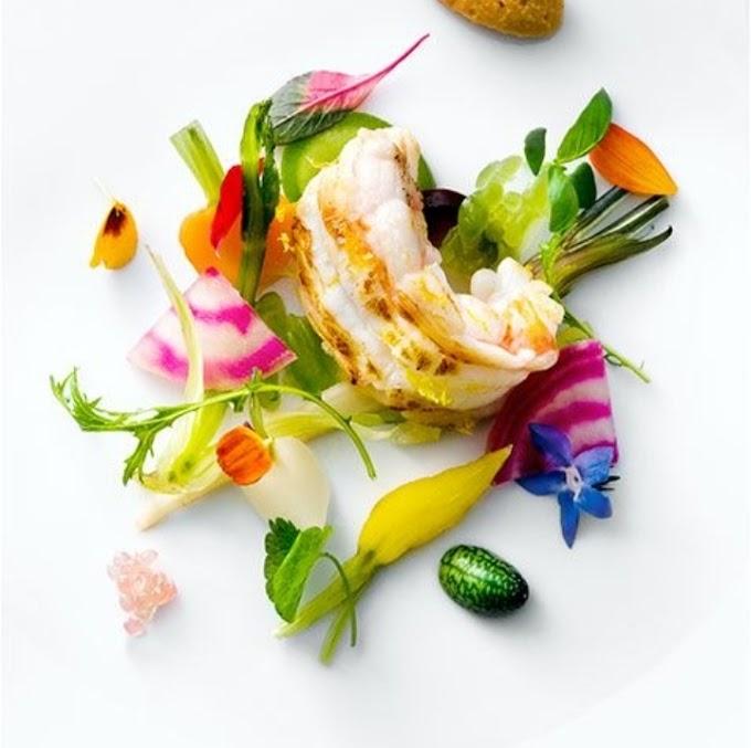Nobel Cuisine   Nouvelle Cuisine
