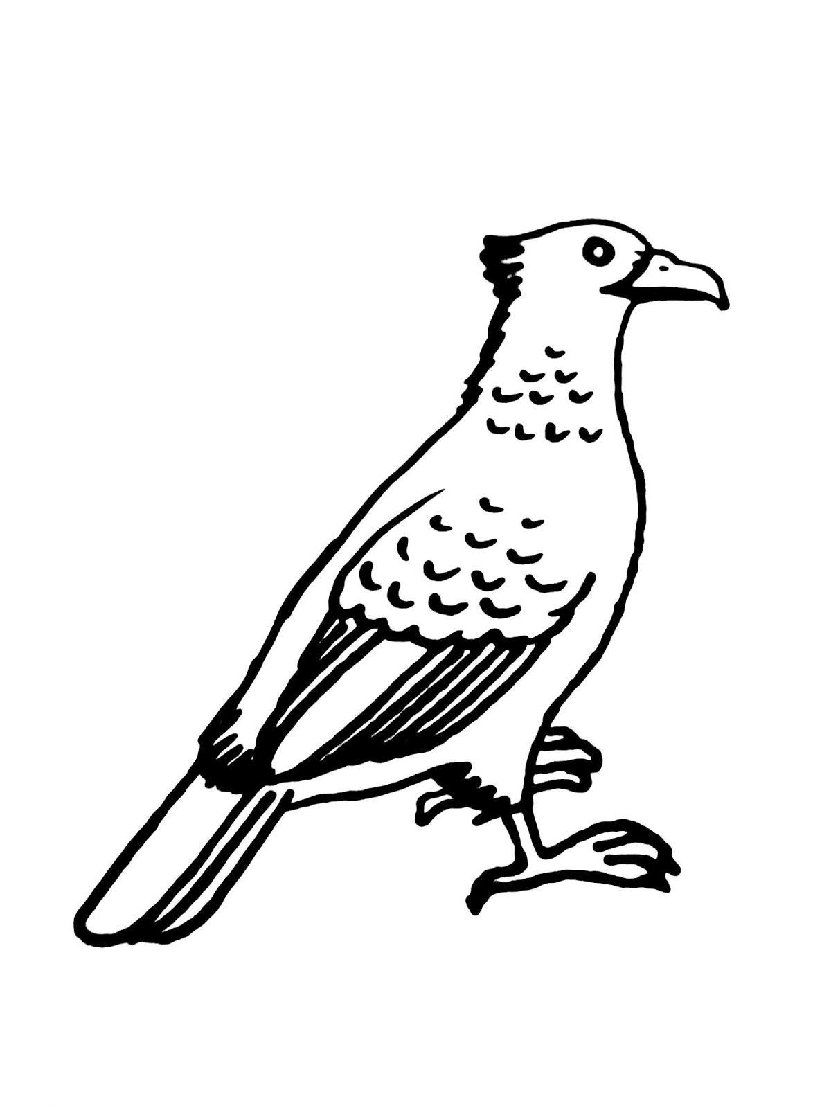 Karikaturku Indonesia Mewarnai Burung Garuda Lambang Negara