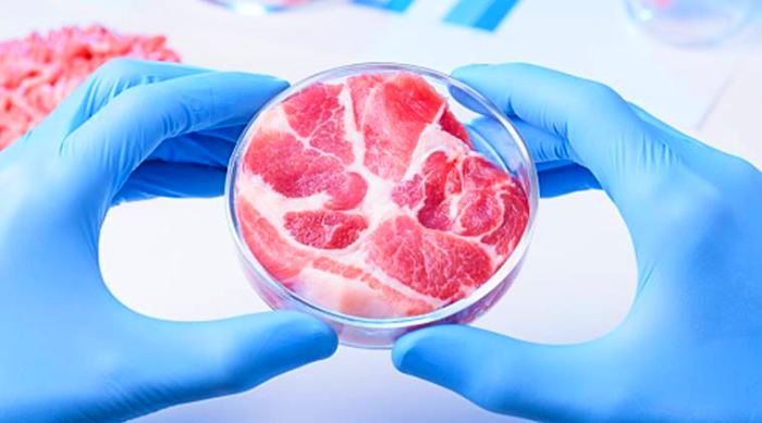 This Breakthrough in Lab-Grown Meat Could Make it Look Like Real Flesh