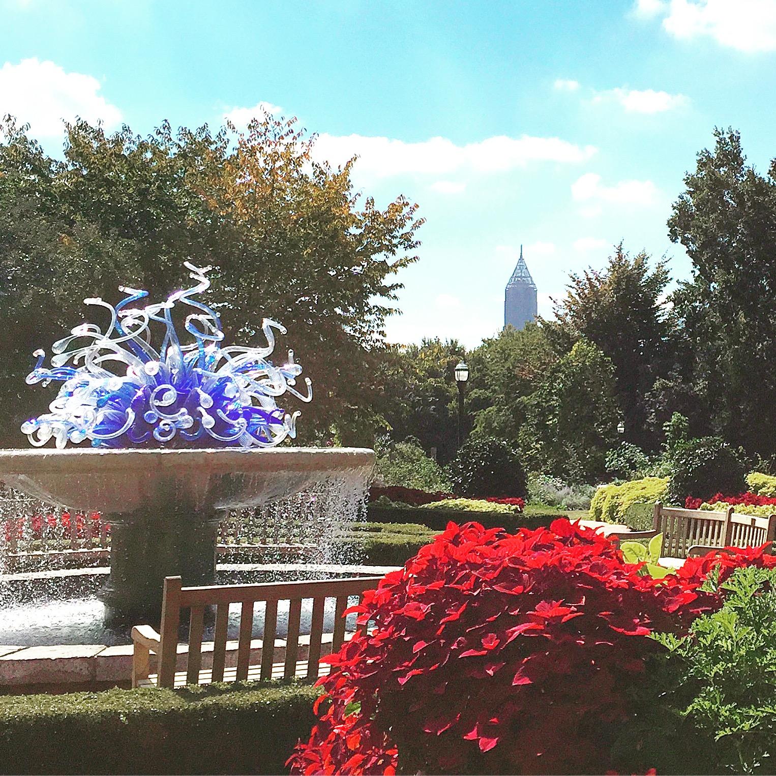 Atlanta Botanical Garden Skyline Gardens: Magnolia Mamas : Atlanta Attractions: Atlanta Botanical