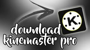 KineMaster Dark Knight Mod Apk download