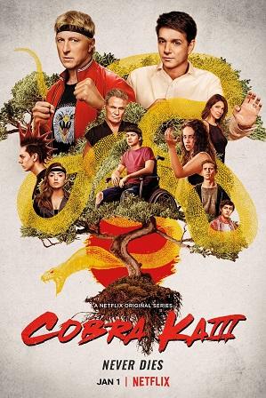 Cobra Kai Season 3 Full Hindi Dual Audio Download 480p 720p All Episodes