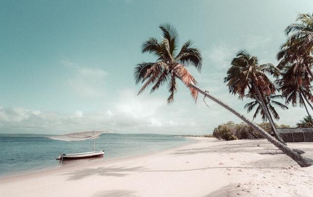 【Africa Daily】モザンビークの騒乱は解決できるのか