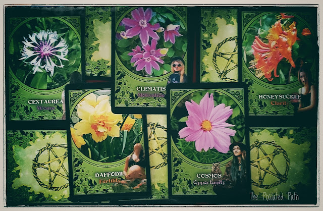 The beautiful oracle cards of the Flower Magic Oracle by Rachel Patterson