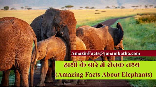 हाथी के बारे मे रोचक तथ्य (Amazing Facts About Elephants)