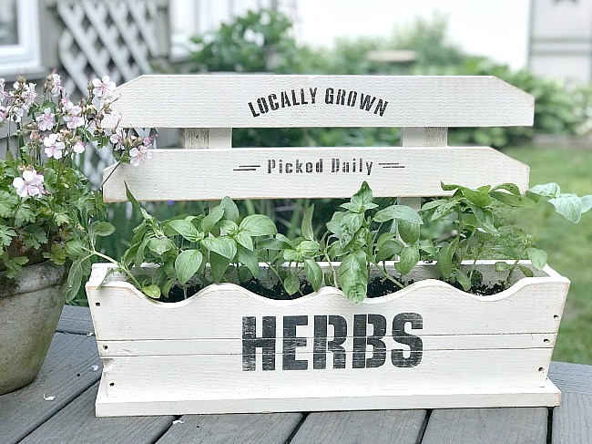 DIY Wooden Herb Garden Box filled with Basil