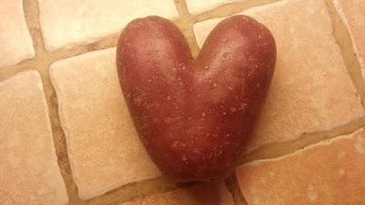 ubi merah dengan bentuk hati